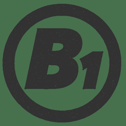 B Eins Logo